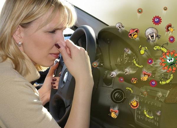 освежитель воздуха от неприятного запаха в машине
